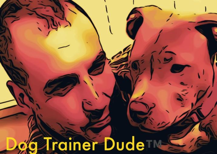 HTTP://JORDANSCHAUL.COM   (AKA Animal Trainer Dude™️)